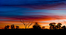rsz_1outback-sunset-880